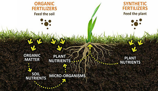potassium humate uses in agriculture - Fulvic acid has a synergistic effect on chemical fertilizers.