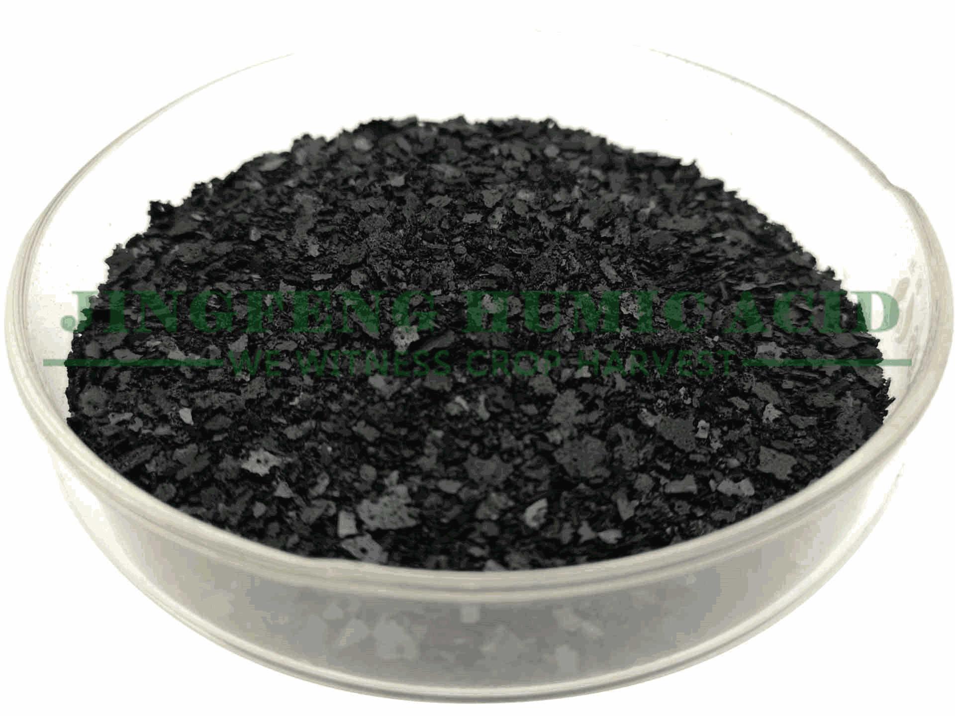 14%-16% Seaweed Extract Fertilizer