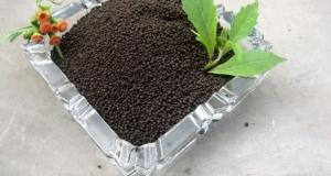 Humic acid on fertilizer efficiency.