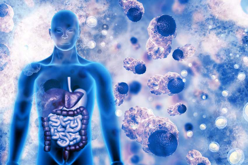 Cases of the benefits of fulvic acid supplements for cancer